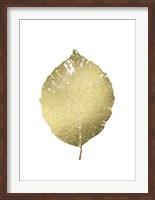 Framed Gold Foil Leaf III