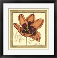 Framed Tulip Study I