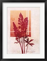 Framed Ombre Lupine Flowers