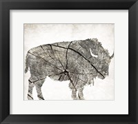 Framed Buffalo Rings Mineral