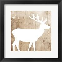 Framed White On Wood Deer