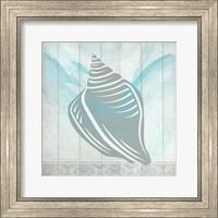 Framed Sea Shell 2