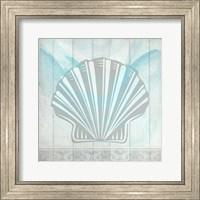 Framed Sea Shell 3