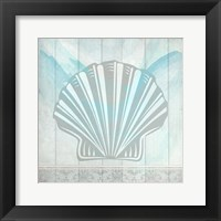 Framed Sea Shell 3