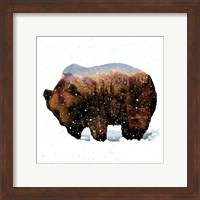 Framed Grizzly Winter