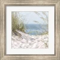 Framed Over The Coastal Dune