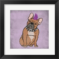 Framed Rockin Frenchie