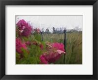 Framed Monet View