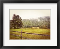 Framed Morning Mountain Smoke Vintage