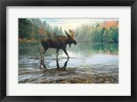 Framed Moose Crossing