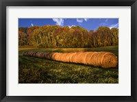 Framed Hay Bales