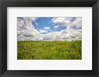 Framed Munson Hill