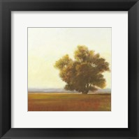 Framed Lone Tree