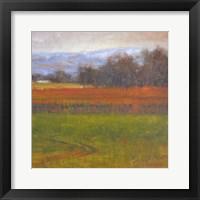 Framed Red Vineyard Near The River I