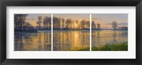 Framed Reflections Triptych