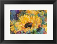 Framed Blue Sunflowers