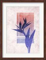 Framed Ombre Bird of Paradise Flower