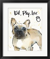 Strike a Paws VI Framed Print
