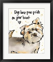 Strike a Paws VII Framed Print