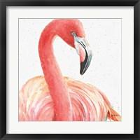Framed Gracefully Pink II