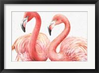 Framed Gracefully Pink I