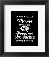 Framed Grandma Knows Everything
