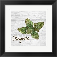 Framed Oregano on Wood