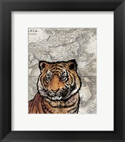 Framed Asian Tiger