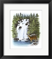 Framed Stag Waterfall