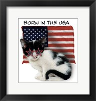 Framed Born In USA