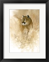 Framed Wild One