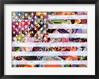 Framed Murican Flag