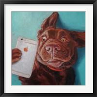 Framed Dog Selfie