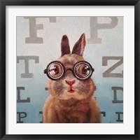 Framed Four Eyes