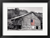 Framed Patriotic Farm II