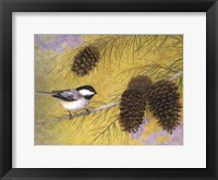 Framed Chickadee in the Pines I