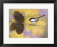 Framed Chickadee in the Pines II