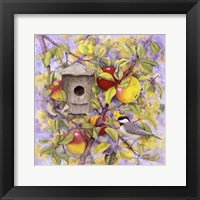 Framed Chickadee & Apples