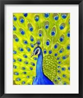 Framed Paisley Peacock