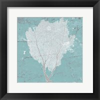 Graphic Sea Fan I Framed Print