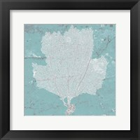 Graphic Sea Fan III Framed Print