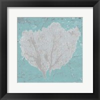 Framed Graphic Sea Fan IV