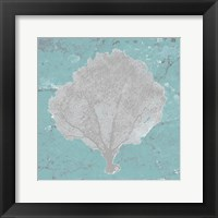 Graphic Sea Fan V Framed Print