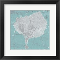 Graphic Sea Fan VIII Framed Print