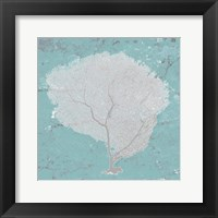 Graphic Sea Fan IX Framed Print