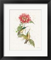 Framed Colorful Hummingbirds I