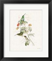 Framed Colorful Hummingbirds III