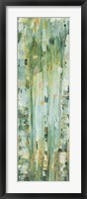 Framed Forest V