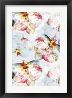 Framed Early Bloom Vol I