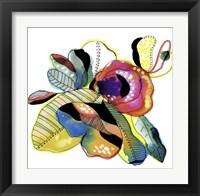 Framed Organic Flower